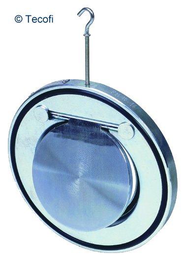 6 swinging check valve